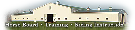 Horse boarding riding lessons horseback equestrian training horsemanship