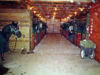 stalls_horses_sm