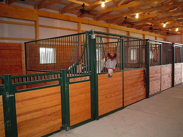 Horse Boarding Large Box Stalls